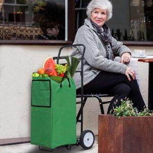 chariot-de-courses-casa-luca