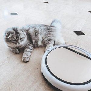 aspirateur-robot-pour-animaux-casa-luca